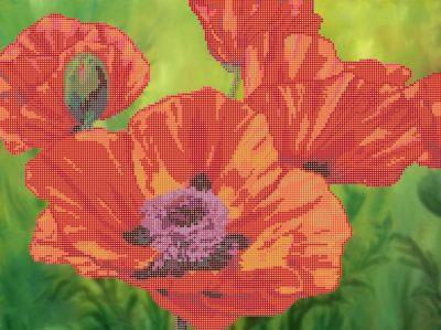 Цветы бисером схемы и описания.